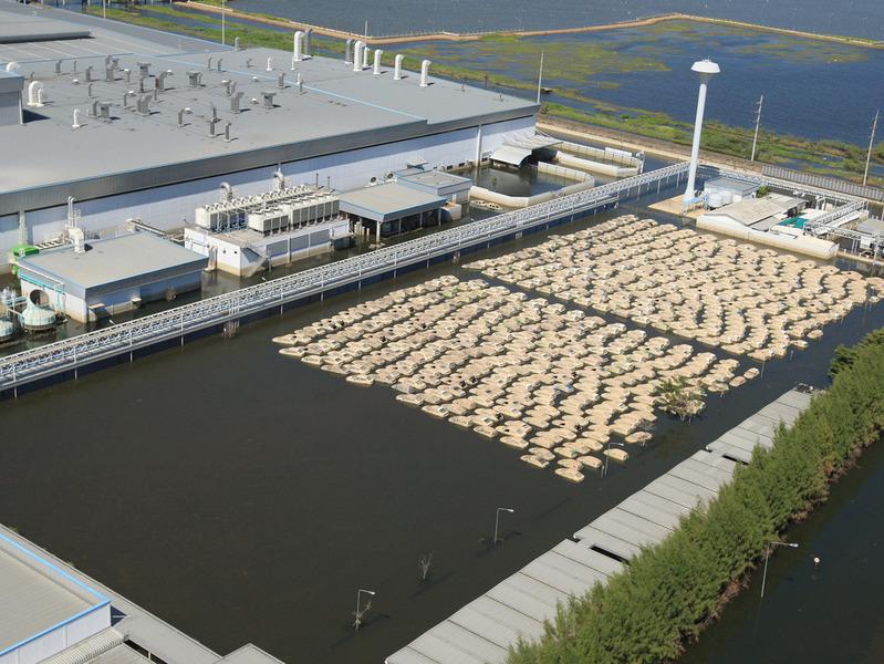 Honda восстановила работу завода в Таиланде и построит еще один