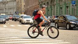 В России появились новые дорожные знаки и разметка