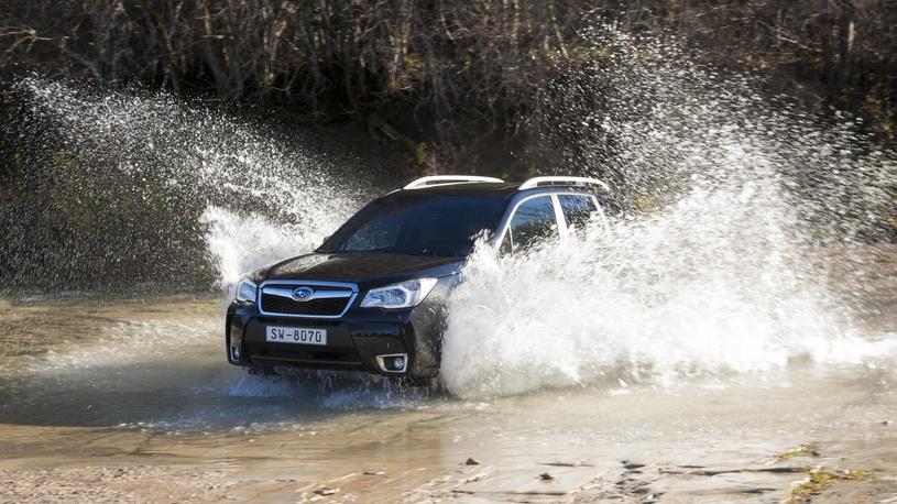 Считаем прибавки и потери в новом Subaru Forester