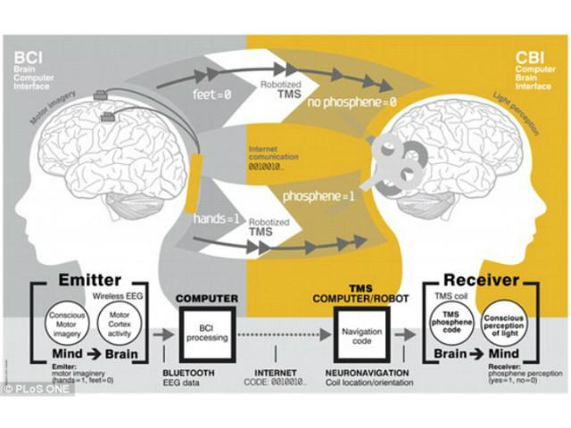 Для передачи данных исследователи использовали гарнитуру ЭЭГ (иллюстрация PLoS ONE).