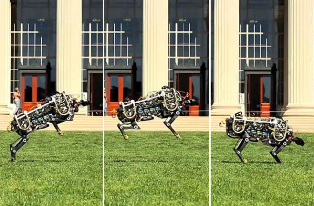 Робот-гепард прыгает (фото MIT via Youtube).