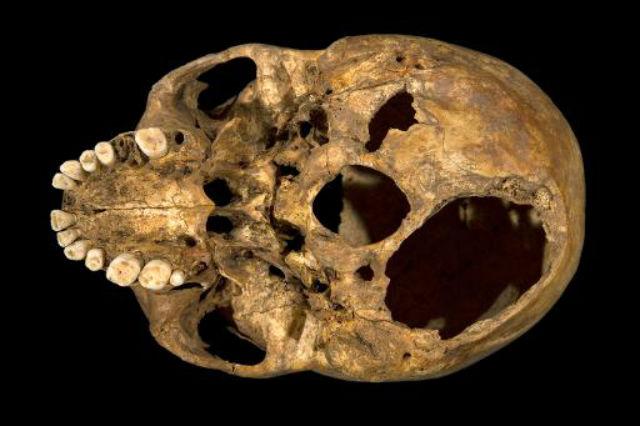 Монарх погиб от двух ранений в голову (фото University of Leicester).