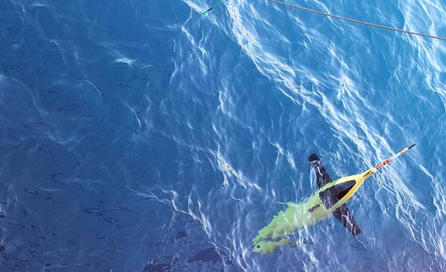 Аппарат может погружаться под воду традиционным для субмарин способом: закачивая воду во внутренние резервуары (фото Andrew Thompson/Caltech).