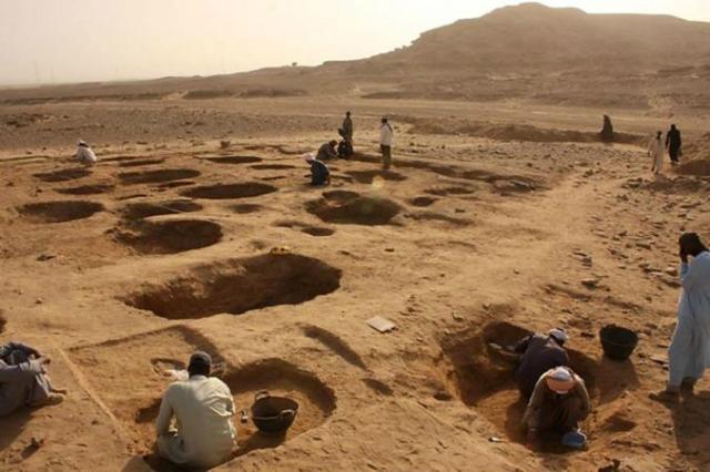 Древние животные, обнаруженные на кладбище в Гиераконполисе, вероятно, были принесены в жертву после смерти их хозяев (фото Renee Friedman/Hierakonpolis Expedition).