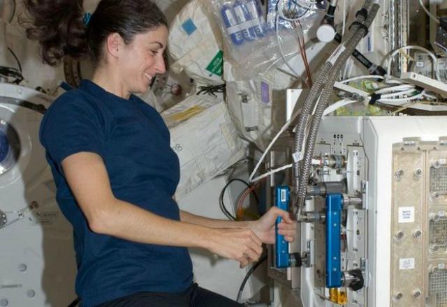 Мыши провели 91 день на орбите вместе с космонавтами (фото NASA).