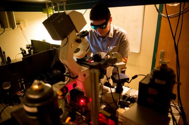 Хиральдо исследует полученные растения (фото Bryce Vickmark/MIT).