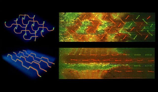 Рентгеновская компьютерная микротомография (слева) показывает микроканалы в материале, расположенные ёлочкой и параллельно. Флюоресценция (справа) демонстрирует смолу (красный цвет), отвердитель (зелёный) и область их смешивания при возникновении внутреннего повреждения (жёлто-оранжевые участки) (фото Jason Patrick).