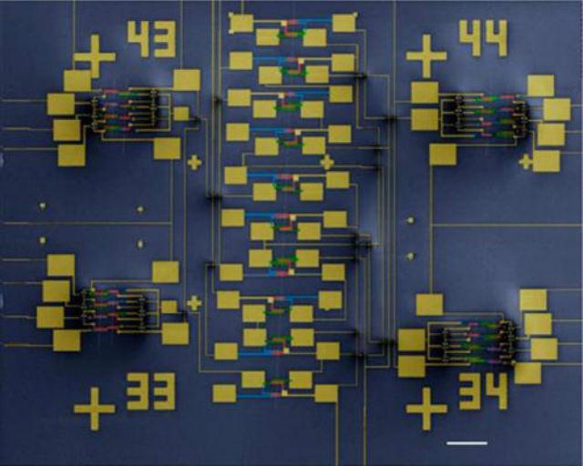 Транзисторы строятся на индивидуальных углеродных нанотрубках (иллюстрация Wikimedia Commons).
