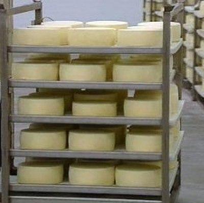 Иранский сыр может появиться на прилавках уже в начале 2016 года