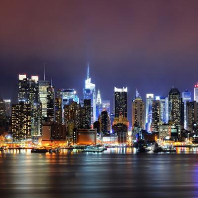 В центре Нью-Йорка появились световые проекции вымирающих животных