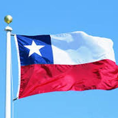 Президент Чили призвала побороть неравенство полов к 2030 году