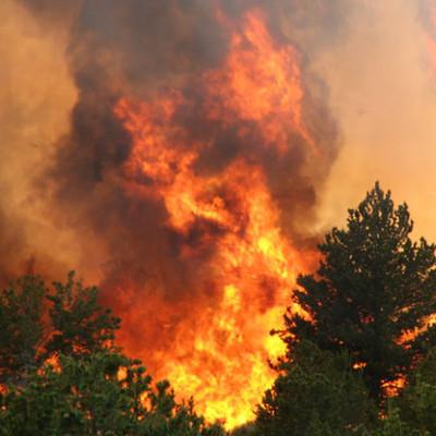 В Хакасии пострадавшим от пожара начали поступать выплаты