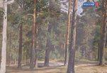 В Омске начала работу выставка живописи Ивана Шишкина