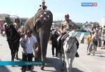 Российский цирк вернулся в Крым