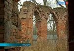 В Царском Селе представили концепцию возрождения Боболовского парка