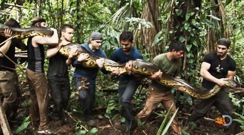 Любитель дикой природы дал анаконде съесть себя живьем