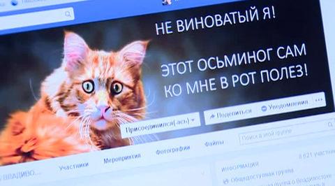 Самому знаменитому коту страны предлагают партбилет и главную роль