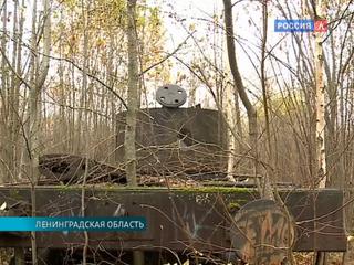 В Ленинградской области нашли забытый железнодорожный состав