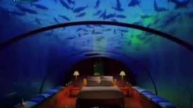 Новый тренд: подводный отель
