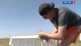 Воздушные бои в небе над Челябинском