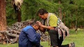 Изгнать духов и спасти душу может только шаман